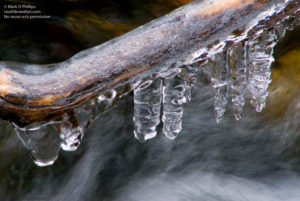 Ice forms on branches above Nod Brook at Blandford Ski Area. Printed on Metallic paper