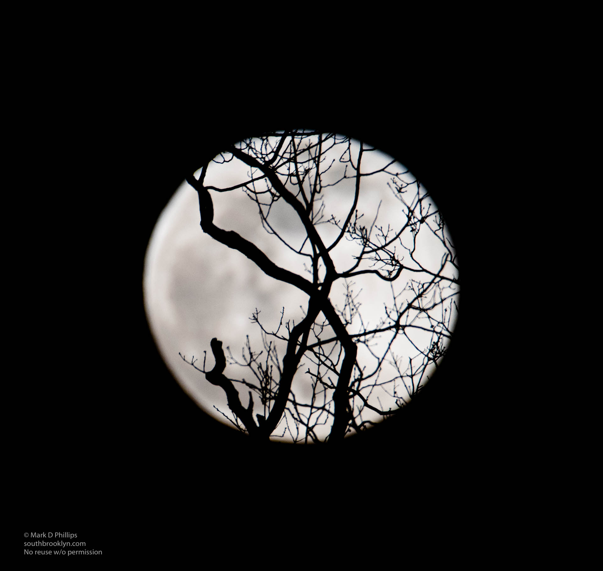Super Moon on April 7, 2020, closest apogee of Moon in year.