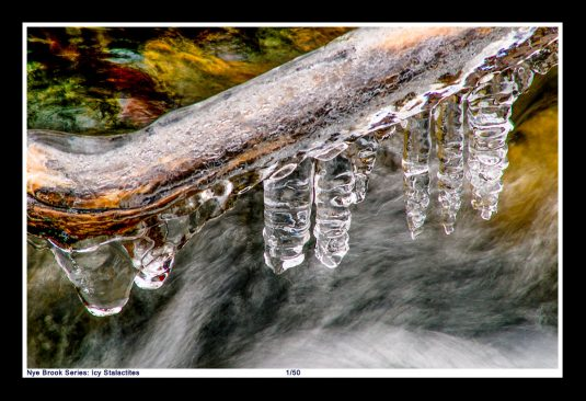NYE BROOK SERIES: Ice forms frozen drops on a tree branch just above the rushing water in Nye Brook at Blandford Ski Area. ©Mark D Phillips