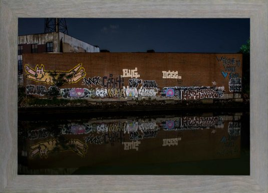 Welcome to Venus on the Gowanus Canal ©Mark D Phillips
